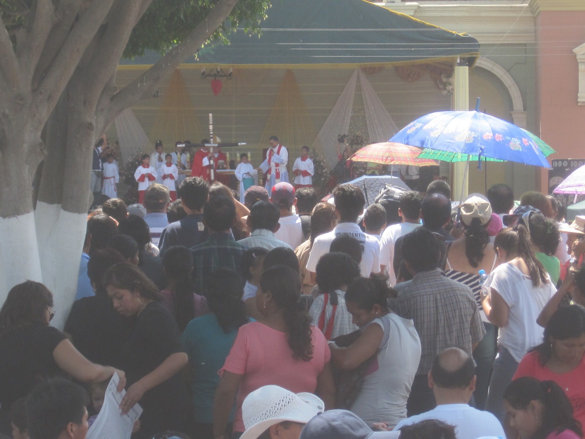 Mass for the Cross officiated by Cardinal Cipriani, August 5, 2012