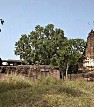 A stone temple complex stands in a grassy, tree-filled landscape. One section has been reduced to ruins but a stone building with a geometric, decorative surface still stands. It has an elongated cone shape.
